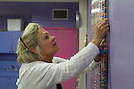 Patty Grossman, an Explorium volunteer, helped put together a mural made of gum balls as a part of FUSION on Monday, August 22, 2011 in Lexington, Kentucky.  It was the most participated in FUSION yet with 1,384 volunteers. Photo by Latara Appleby | Staff