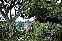 Rural scene Holguin Province, Cuba. 10-12-10  The village of Bajo bel Cerro.