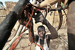 A newly arrived man displaced by violence in Darfur builds a shelter for his family in the Goz Amer refugee camp in eastern Chad. More than a quarter million residents of Darfur live in camps in Chad, along with almost 200,000 Chadians who have been internally displaced by related violence.
