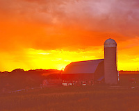 Rural Summer Sunset, Northeastern Iowa   Barn and farm fields