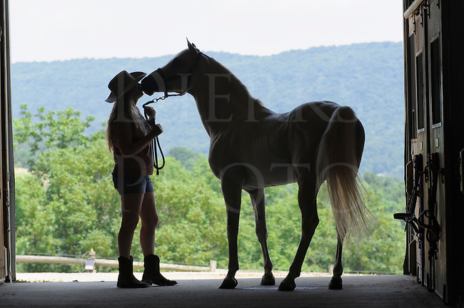 Woman and horse silhouetted in open barn stable door, a country girl kissing her animal while wearing cowboy hat, shorts, and boots.