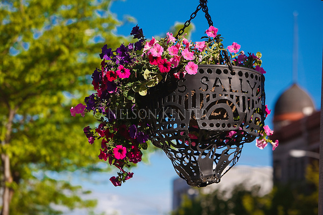 Hanging flower baskets downtown Missoula, Montana