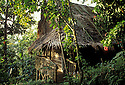 Palm-thatched guest room at The Village hotel eco-resort in Pohnpei, Micronesia.  .