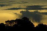 Photograph of clouds over silhouetted treetops