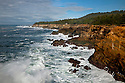 OR01178-00...OREGON - Rough surf pounding against the sandstone cliffs at Shore Acres State Park.