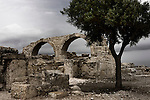 Travel stock photo of a Lonely tree among the ruins of an ancient building at Roman Agora The Archaeological Site of Kourion near Limassol Roman period in Cyprus Spring 2007 Horizontal Beautiful tranquil scene