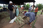Making mats at Gone Rural crafts, next to House of Fire art gallery, Ezulwini valley, Swaziland, Africa