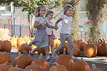 2015 Los Altos High School Pumpkin Patch