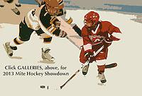 2013 Mite Hockey Showdown