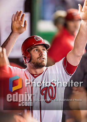 13 October 2016: Washington Nationals second baseman Daniel Murphy returns to the dugout after scoring Washington's first run in the 2nd inning of the NLDS Game 5 against the Los Angeles Dodgers at Nationals Park in Washington, DC. The Dodgers edged out the Nationals 4-3, to take Game 5, and the Series, 3 games to 2, moving on to the National League Championship against the Chicago Cubs. Mandatory Credit: Ed Wolfstein Photo *** RAW (NEF) Image File Available ***