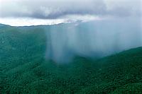Aerial of tropical rainstorm showing rainshaft over rainforest in Guyana Highlands, Venezuela