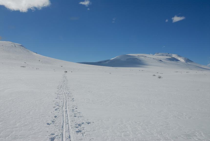 Skiing in Trollheimen,Norway Landscape, landskap,