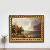 Reference #2694_404733dp<br />