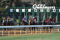 HOT SPRINGS, AR - MARCH 18: The start of the Essex Stakes at Oaklawn Park on March 18, 2017 in Hot Springs, Arkansas. (Photo by Justin Manning/Eclipse Sportswire/Getty Images)