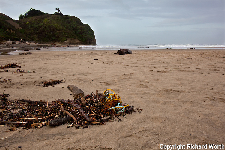 Natural and man-made debris litters the beach after high tide.  Pomponio State Beach, California.