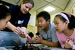 A nutrition student teaches Josiah Quincy School students about decomposition. The students looked at how worms help to break down organic matter. (Melody Ko/Tufts University)