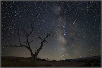 When I trek out into the night to photograph the Milky Way, I am usually prepared. That was the case in this image from Enchanted Rock in the Texas Hill Country. I use a program called Stellarium to plot exactly when and where the Milky Way will rise, as well as noting the moon phase (a full moon will wash out the stars that make up the night sky). This photo was taken on the north west side of Enchanted Rock. I took several long exposures using an astro-tracker, and in one of the shots I was fortunate enough to capture this shooting star adding a little drama to a tranquil scene.