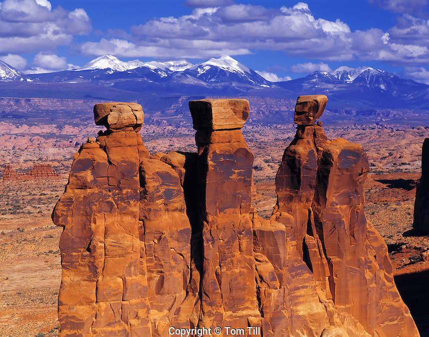 The Three Gossips, La Sal Mountains beyond, Arches National Park, Utah