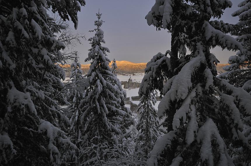 Winter morning,Gauldalen,Norway Landscape, landskap,