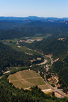 Aerial photograph Russian River Sonoma Coast Pinot Noir vineyards