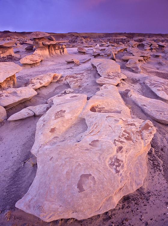 """Eroded sandstone rocks made of Fruitland Formation sit in """"Mushroom City"""" in Bisti Badlands"""