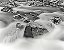 BW02199-00...WYOMING - Pebble Creek in Yellowstone National Park. Ilford HP5 Plus 4x5 Film.