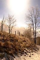 Frozen Virginia