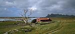 Farm at Waitangi West. Maunganui Mountain in background. Chatham Islands. New Zealand.