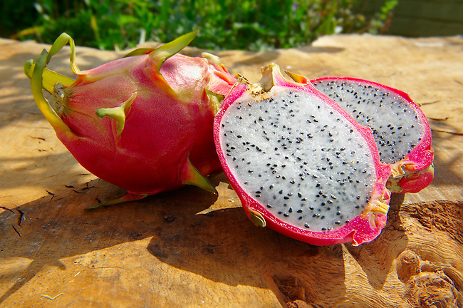 Dragon Fruit Tropical Fruit Food Photography, pictures & images