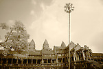 Infrared Image of Angkor Wat Looking West