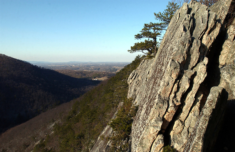 Buzzard's Rock from the Big Blue Trail in the Fort Valley, Virginia.