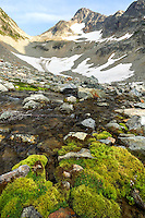 Fisher Creek and upper Fisher River Basin, North Cascades National Park, Skagit County, Washington, USA