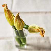 Gastronomie: Fleurs de Courgette femelles / Flower of zucchini - Stylisme : Valérie LHOMME