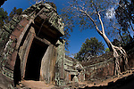 A temple in the ancient city of Angkor in Cambodia.