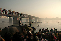 Mahouts (people who controls elephant in India) taking their elephants for a bath to Gandak river during Sonepur cattle festival. Bihar, India, Arindam Mukherjee.