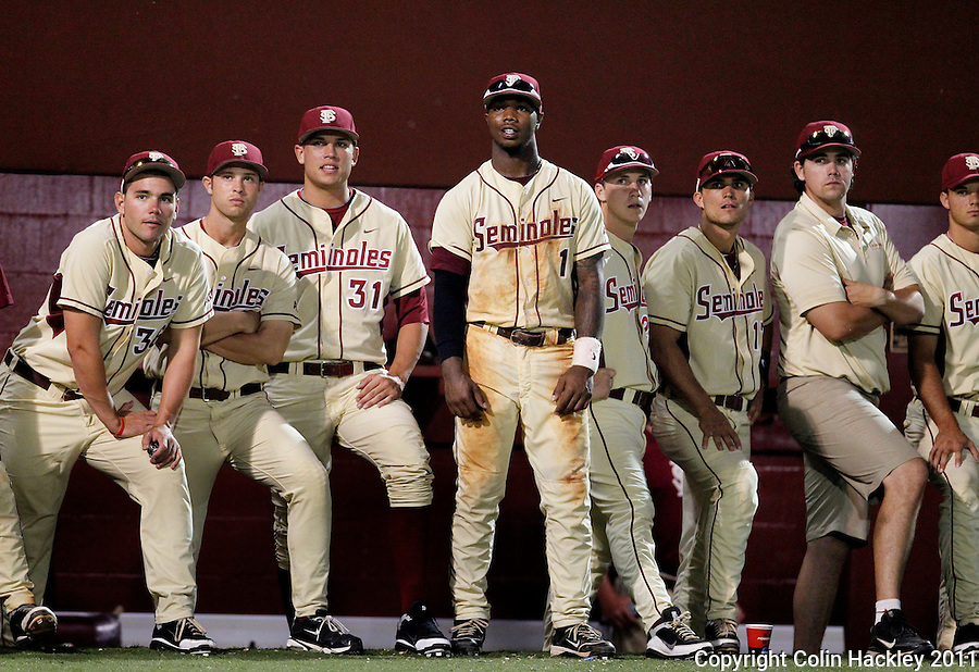 TALLAHASSEE, FL 10-FSU-TAMUBASE11 CH-Florida State watches the final innning agaisnt Texas A&M Sunday at Dick Howser Stadium during NCAA Super Regional action in Tallahassee. The Seminoles beat the Aggies 23-9 to stay alive in the best of three series...COLIN HACKLEY PHOTO