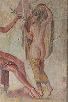 Daphne, from a fresco of Apollo and Daphne, on the South wall of a small room off the atrium of the Casa dell Efebo, or House of the Ephebus, Pompeii, Italy. The fresco is in the Fourth Style of Roman wall painting, 60-79 AD, a complex narrative style. This is a large, sumptuously decorated house probably owned by a rich family, and named after the statue of the Ephebus found here. Pompeii is a Roman town which was destroyed and buried under 4-6 m of volcanic ash in the eruption of Mount Vesuvius in 79 AD. Buildings and artefacts were preserved in the ash and have been excavated and restored. Pompeii is listed as a UNESCO World Heritage Site. Picture by Manuel Cohen