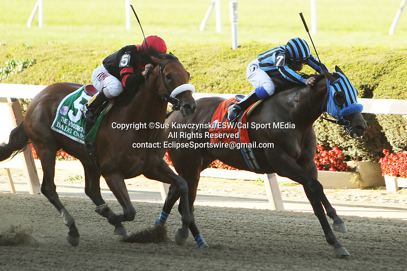 "September 27, 2014: Private Zone with Martin Pedroza win the 75th running of the $400,000 Grade I Vosburgh Stakes, a ""Win and You're In""  3-year olds & up, going 7 furlongs at Belmont Park. Trainer: Alfredo Velazquez . Owner: Good Friends Stable . Sue Kawczynski/ESW/CSM"