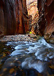 Rapids on the Virgin River Narrows. Zion National Park, Utah.