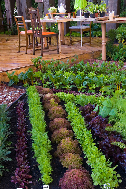 Edible landscaping vegetable garden and deck plant for Beautiful garden decking