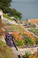 Gardens of Alcatraz in building ruins