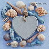 Isabella, MODERN, MODERNO, photo+++++,ITKE046613-K,#n# maritime,sea shells