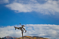 wooden bird used to view the air current in New Mexico
