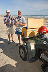 biiologists, Gregg Doney and Mark Proster, with young peregrine falcons captured for banding and measurements during the Padre Island Peregrine Falcon Survey, autumn, south Padre Island, Texas