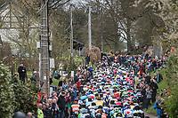 peloton up the (new) C&ocirc;te de Pont<br /> <br /> 103rd Li&egrave;ge-Bastogne-Li&egrave;ge 2017 (1.UWT)<br /> One Day Race: Li&egrave;ge &rsaquo; Ans (258km)