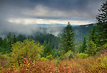 Idaho, North, Panhandle. Morning mists and autumn color in the Idaho Panhandle National Forest's Coeur d'Alene District.