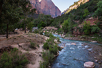 Scenes from Zion National Park in Springdale, UT on Sunday, June 4, 2017. (Justin Cook)