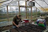 Jacksonville, Florida<br /> November 4, 2013<br /> <br /> Veteran's sustainable farm founded by Purple Heart veteran Adam Burke and managed by Afghan and Iraqi veteran Steve Ellseberry.<br /> <br /> Ex-Marine Shaun Valdivia plants seeds for starts in one of the farms green houses. A second green house is almost complete.