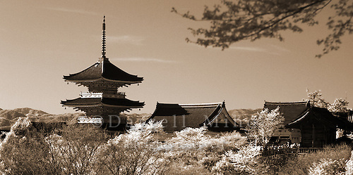 Apr. 08, 2010; Kyoto, Japan - Kyoto..infrared