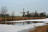 Hallum, 27 jan. 2006. Rietmaaien langs de Hallumertrekvaart.